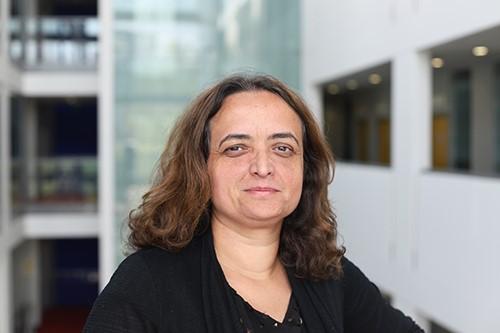 Dr Carolina Matos, Senior Lecturer, City, University of London