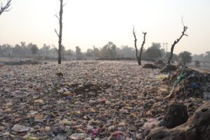 A desolate landscape of barren trees in the midst of a huge garbage dumping point near the canal near Sahiwal Jhal Road, India. This has started spreading pollution in the area from the garbage point. Envelopes that do not rot for five hundred years are causing a lot of pollution